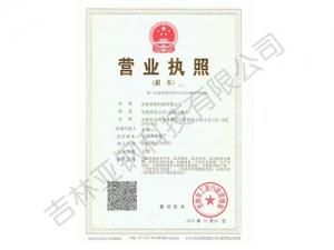 亚钢科技营业执照副本